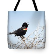 Song Of A Red-winged Blackbird Tote Bag by Ellie Teramoto