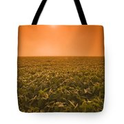 Soybean Field On A Misty Morning Tote Bag by Dave Reede