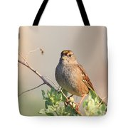 Sparrow Bird Perched . 40D12304 Tote Bag by Wingsdomain Art and Photography