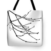 Speaking To Heaven Tote Bag by Gwyn Newcombe