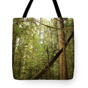 Spirit Of The Pacific Northwest Tote Bag by Carol Groenen