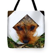 Stuck On You Tote Bag by Karen Wiles