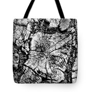 Stumped Tote Bag by Mike McGlothlen