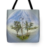 Summer Dreams Tote Bag by Debra and Dave Vanderlaan