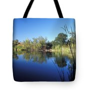 Summertime Reflections Tote Bag by Kathy Yates