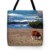 Surf And Turf  Tote Bag by Jeff Lowe