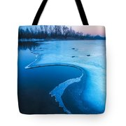 Swan Tote Bag by Davorin Mance