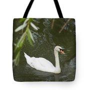 Swan Enjoying A Swim Tote Bag by Corinne Elizabeth Cowherd