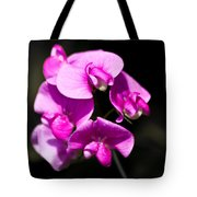 Sweat Pea Tote Bag by Dawn OConnor
