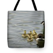 Swimming Lessons Tote Bag by Heather Applegate