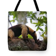 Tamandua Tote Bag by Bruce J Robinson
