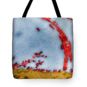 Tem Of Influenza Virus Tote Bag by Science Source