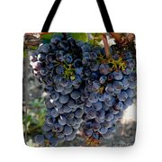 The Concord Tote Bag by Richard Ortolano