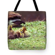 The First Family Tote Bag by Karol Livote