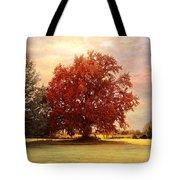 The Healing Tree  Tote Bag by Jai Johnson