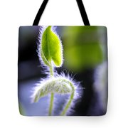 Tiny New Leaves Tote Bag by Judi Bagwell