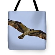 Topsail Osprey Tote Bag by Betsy Knapp