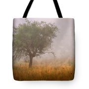 Tree In Fog Tote Bag by Debra and Dave Vanderlaan