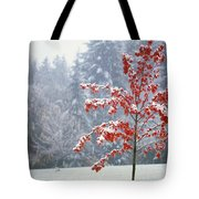 Tree In The Winter Tote Bag by Natural Selection Craig Tuttle