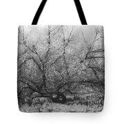 Tree of Enchantment Tote Bag by Debra and Dave Vanderlaan