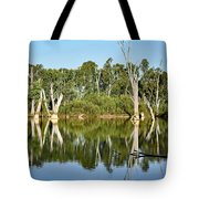 Tree Stumps In The River Tote Bag by Kaye Menner
