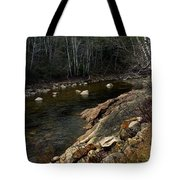 Trout Fishery Tote Bag by Skip Willits