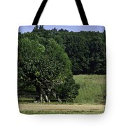 Trumpet Vine and Fence at Appomattox Courthouse Virginia Tote Bag by Teresa Mucha