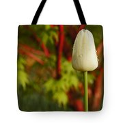 Tulip And Coral Maple In Spring Tote Bag by Mick Anderson