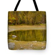 Tunnel Pond Tote Bag by Idaho Scenic Images Linda Lantzy