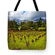 Vineyards and Mt St. Helena Tote Bag by Garry Gay