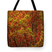 Wall Of Red Tote Bag by Ed Smith