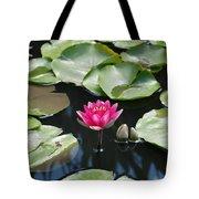 Water Lilies Tote Bag by Jennifer Ancker