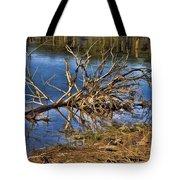 Waterlogged Tree Tote Bag by Douglas Barnard