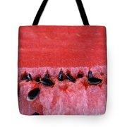 Watermelon Seeds Tote Bag by Susan Herber