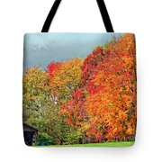 West Virginia Maples 2 Tote Bag by Steve Harrington