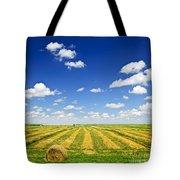 Wheat farm field at harvest Tote Bag by Elena Elisseeva