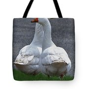 Which Way Tote Bag by Lisa Phillips