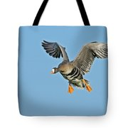 White-fronted Goose Anser Albifrons Tote Bag by Winfried Wisniewski