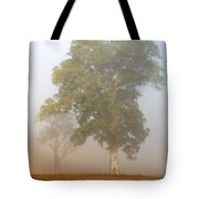 White Gum Dawn Tote Bag by Mike  Dawson