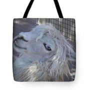 White Llama Tote Bag by Enzie Shahmiri