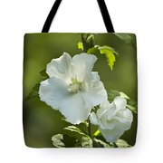 White Rose of Sharon Tote Bag by Teresa Mucha