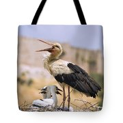 White Stork Ciconia Ciconia, Turkey Tote Bag by Carson Ganci