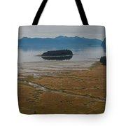 Wild Alaska Coast Tote Bag by Mike Reid