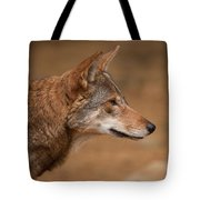 Wile E Coyote Tote Bag by Karol  Livote