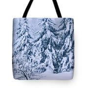 Winter Coat Tote Bag by Aimelle