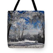 Winter Morning Tote Bag by Lois Bryan