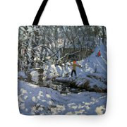 Winter Stream Tote Bag by Andrew Macara