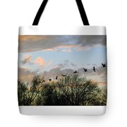 Winter Sunset  Silhouette Tote Bag by Brian Wallace