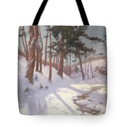 Winter Woodland With A Stream Tote Bag by James MacLaren