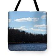 Wisconsin's Peshtigo River Tote Bag by Ms Judi